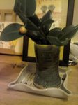 Picture020412_234023.jpg